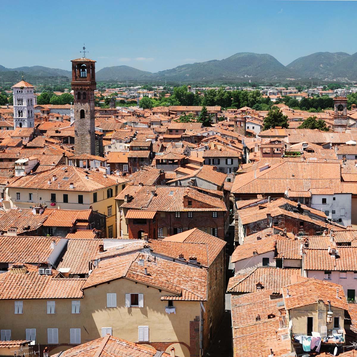 Matrimonio Cantina Toscana : Ristorante cantina toscana